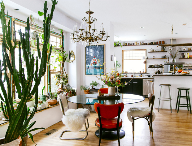 A Guide to Decorating with Houseplants